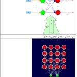 آموزش شبکه لایه کوهونن