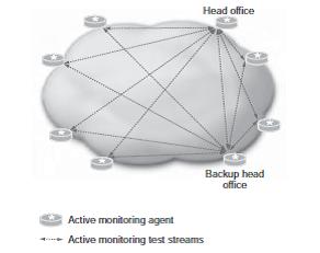 شکل 5.8: توپولوژی نظارت فعال مش جزئی.